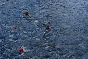 Team OEI during swim